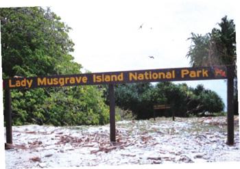 馬斯格雷夫夫人島