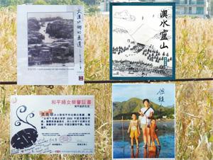 黃惠琼的作品及證書