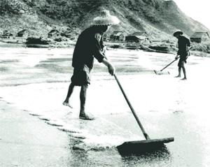 曾盛產海鹽
