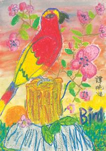 譚琬凝-(9歲)-Parrot
